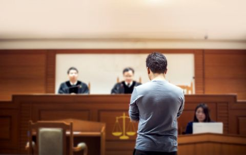Cases With Self-Represented Litigants